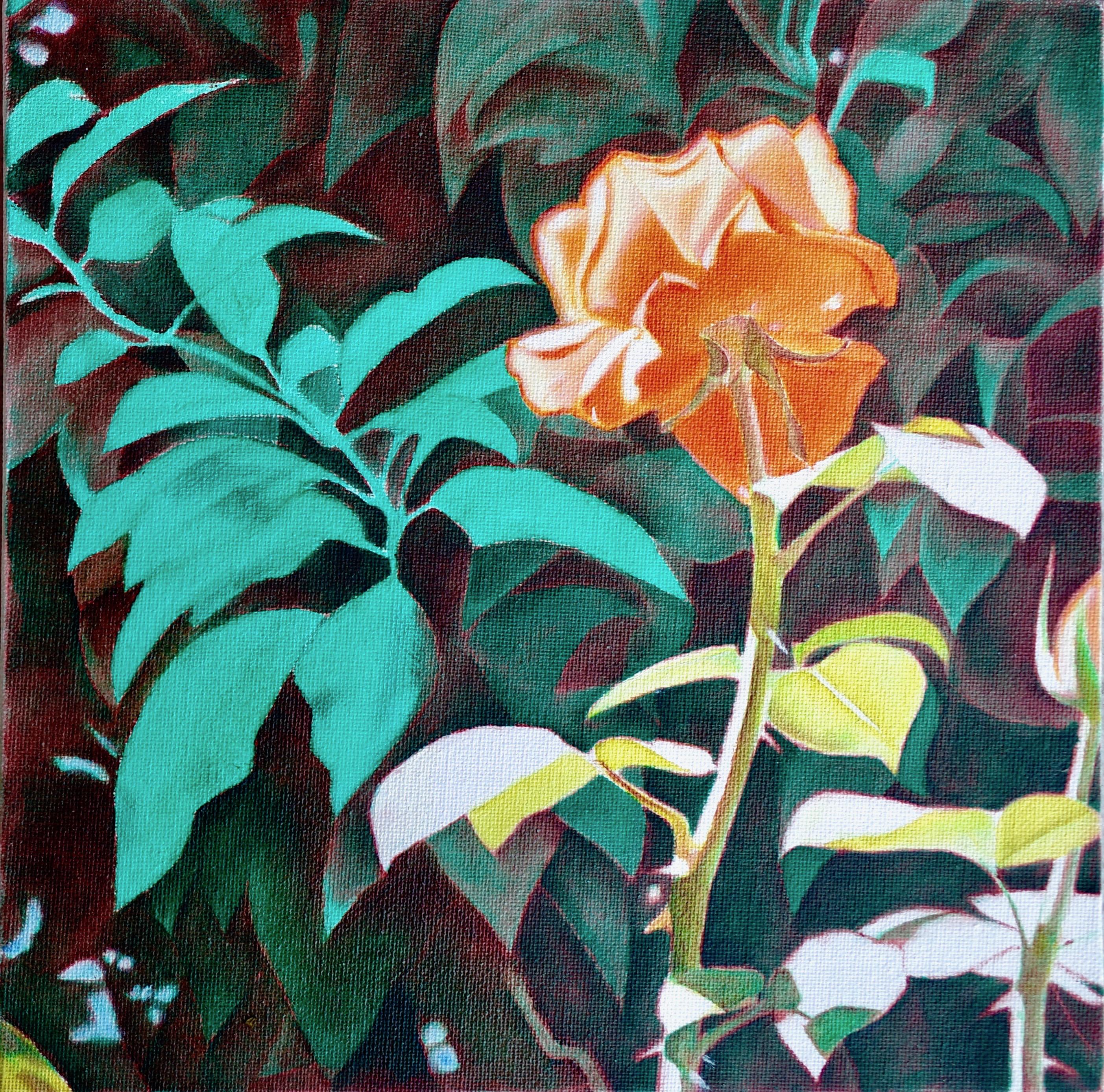 Rose Variante I